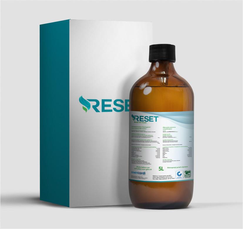 KOS Design - Reset