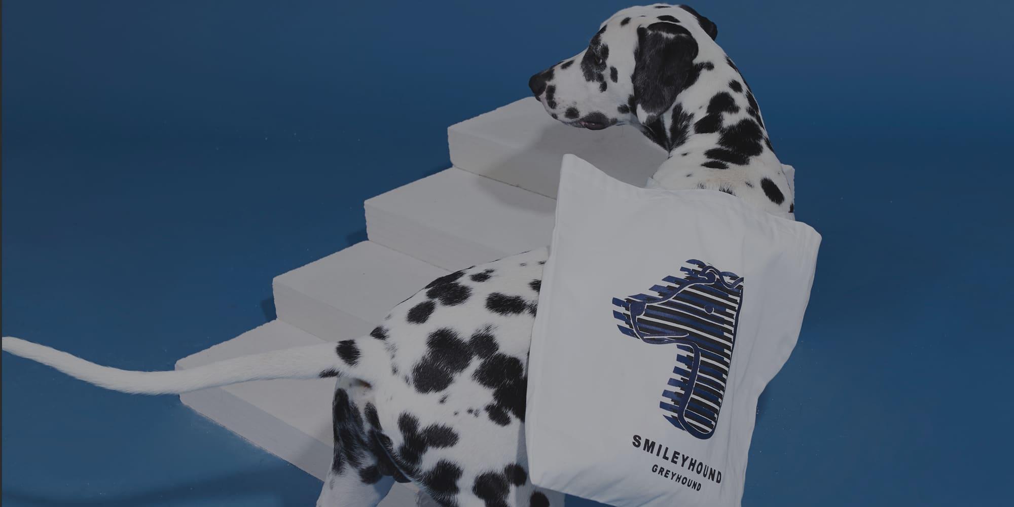KOS Design - Smileyhound